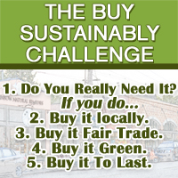 Buy sustainably challenge