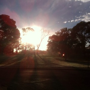 Sun at the end of the street this morning. Riding to work when it's zero degrees!